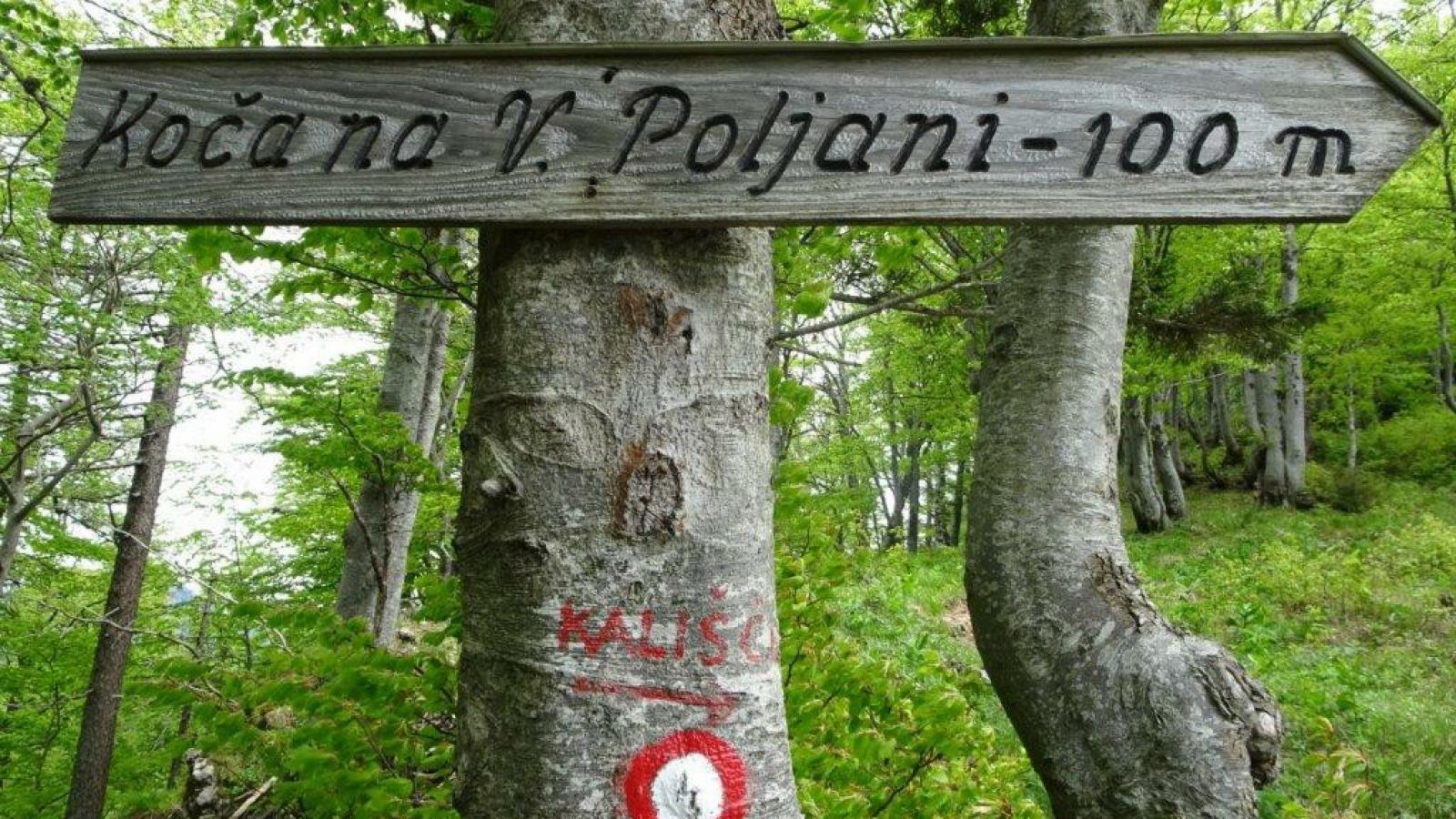 Mala in Velika Poljana (7)