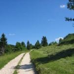 Cesta na Kozlovo goro.